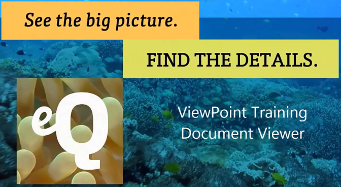 Various Viewpoint Document Viewers